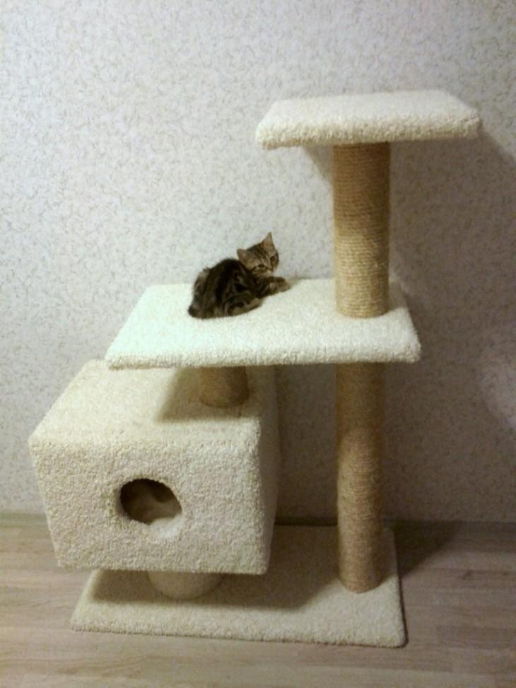 Домик когтеточка для кошек как сделать своими 77